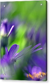 Ode To Monet Acrylic Print by Rebecca Cozart