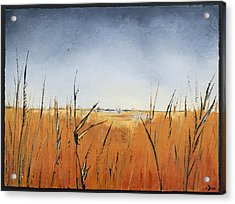 Of Grass And Seed Acrylic Print by Carolyn Doe