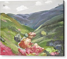 Acrylic Print featuring the painting Of Mountains And Valleys by Trilby Cole