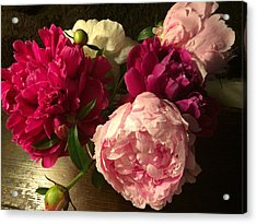 Off Center Peonies Acrylic Print by Gillis Cone