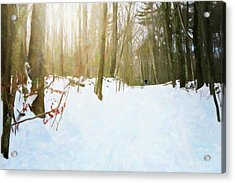 Acrylic Print featuring the digital art Off The Beaten Path by Sue Collura