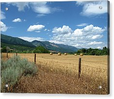 Ogden Valley Hay Bales Photo Acrylic Print