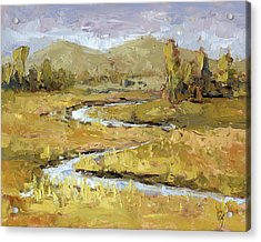 Acrylic Print featuring the painting Ogden Valley Marsh by David King