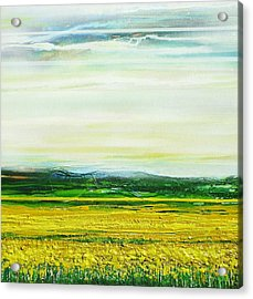Oil Seed Rape Tyndale No3 Acrylic Print by Mike   Bell