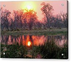 Okavango Delta Acrylic Print