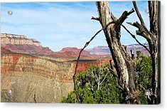 Ol' Fence On Horseshoe Mesa Acrylic Print