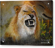 Ol Snarlee Acrylic Print by Les Smith