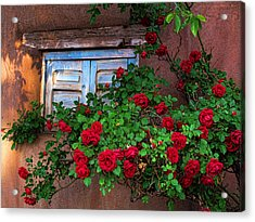 Old Adobe With Roses Acrylic Print