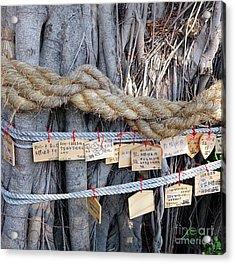 Old Banyan Wishing Tree Acrylic Print by Yali Shi