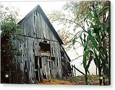 Old Barn In The Morning Mist Acrylic Print