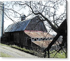 Old Barn With Tree Watercolor Acrylic Print by Laurie With