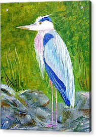 Old Blue Fisherman Acrylic Print by Steve Duke - Artist