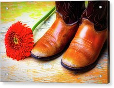 Old Boots And Daisy Acrylic Print by Garry Gay