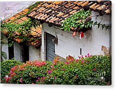 Old Buildings In Puerto Vallarta Mexico Acrylic Print by Elena Elisseeva