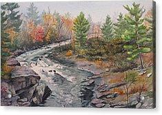Old Burleigh Stream Acrylic Print by Debbie Homewood