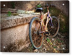 Old Bycicle Acrylic Print by Carlos Caetano