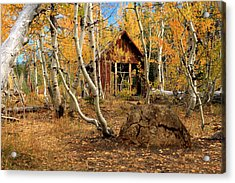 Old Cabin In The Aspens Acrylic Print by James Eddy