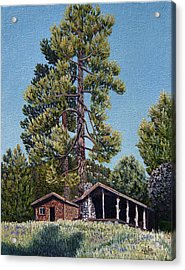 Old Cabin In The Pines Acrylic Print by Jiji Lee