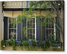 Old Charleston Window  Acrylic Print