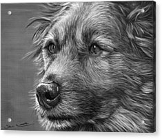 Old Charlie Acrylic Print