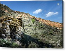 Old Country Hovel Acrylic Print by RicardMN Photography
