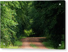 Acrylic Print featuring the photograph Old Dirt Road by Shelby Young