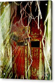 Old Door Set Three Something There Acrylic Print by Kathy Daxon