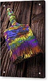 Old Dried Paintbrush Acrylic Print