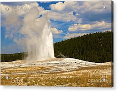 Acrylic Print featuring the photograph Old Faithful by Robert Pearson