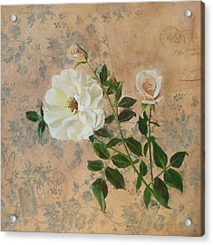 Old Fashioned Rose Acrylic Print by Carrie Jackson
