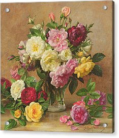 Old Fashioned Victorian Roses Acrylic Print