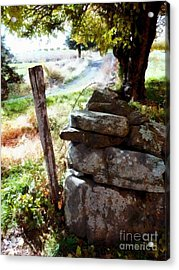 Old Fence Post Orchard Acrylic Print by Janine Riley