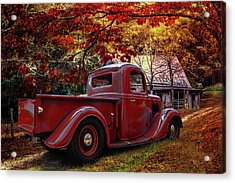 Old Ford At The Farm Acrylic Print