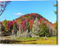 Old Forge Acrylic Print by Rhys Templar