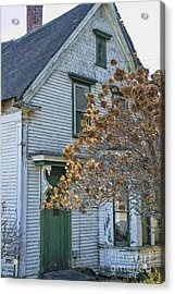 Old Home Acrylic Print by Alana Ranney