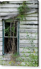 Old House Acrylic Print by Margaret Palmer