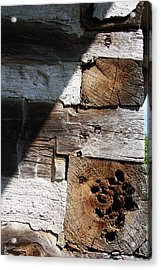 Acrylic Print featuring the photograph Old Log House Detail by Joanne Coyle