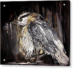 Old Man Bird Acrylic Print