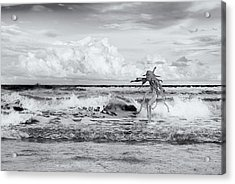 Acrylic Print featuring the photograph Old Man In The Sea by Carolyn Dalessandro