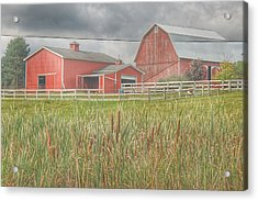 0033 - Old Meets New Acrylic Print