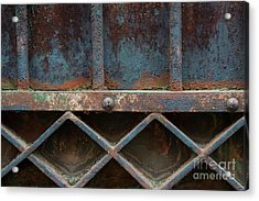Acrylic Print featuring the photograph Old Metal Gate Detail by Elena Elisseeva
