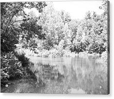 Old Michigan Creek Acrylic Print by Derek Clark