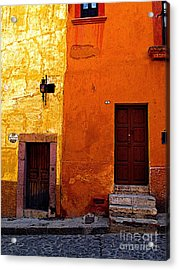 Old Neighbors Acrylic Print by Mexicolors Art Photography