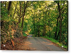 Acrylic Print featuring the photograph Old Plank Road by Cricket Hackmann