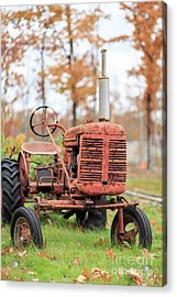 Old Red Tractor Quechee Vermont Fall Acrylic Print