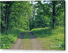 Old Road Through The Woods Acrylic Print by Edward Fielding