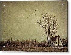 Old Rural Farmhouse With Grunge Feeling Acrylic Print by Sandra Cunningham