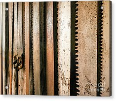 Retired Rusted Saws Acrylic Print by Lexa Harpell