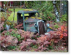 Old Rusty Truck I C1000 Acrylic Print by Mary Gaines