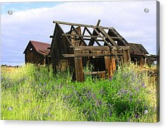 Old Shack At The Gorge Ba 3000 Acrylic Print by Mary Gaines